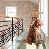 Glass Floor Walkways & Stair Treads
