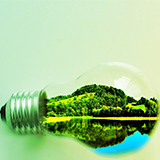 Green Lights: A Lighting Product Manufacturer's Roadmap to Sustainable Building Rating Systems