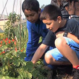 Cultivating Young Minds: A Net-Zero School for Tomorrow's Leaders